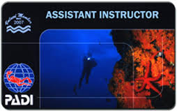 Assistant Instructor Card