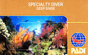 Deep Diver Card