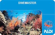 DiveMaster Card