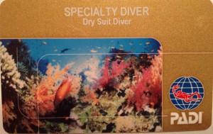 Dry Suit Diver2